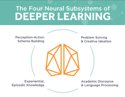 Four_neural_subsystems_graphic.png