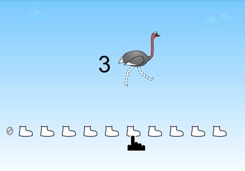 Ostrich 4