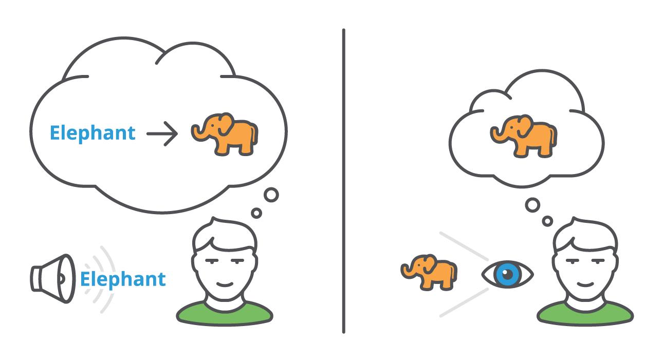 ST_Elephant-Graphic